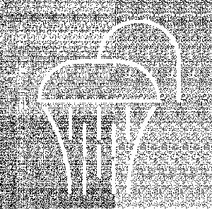 MySpa Shower Waterfall